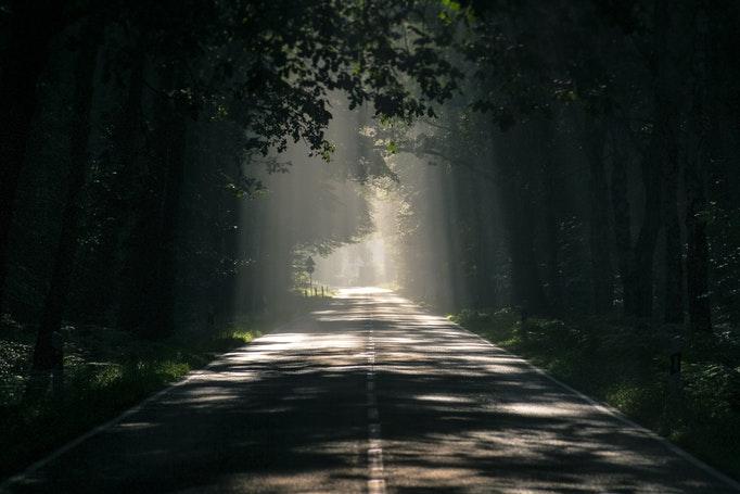 遠回りの道